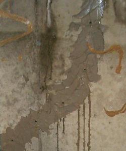 Echec-Reparation-Fissure-Basse-Pression-2-Ans